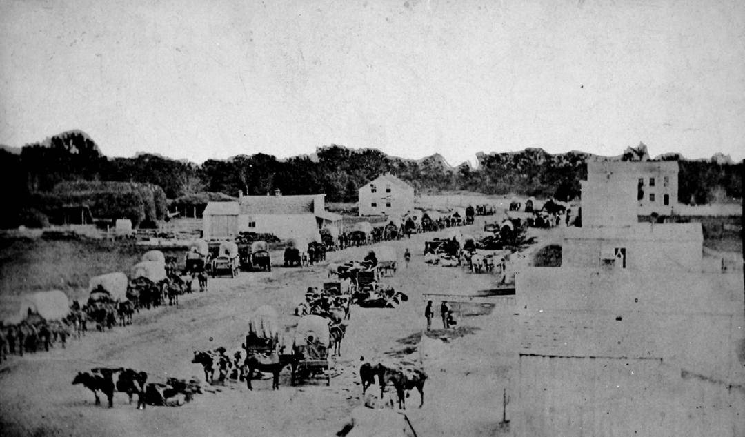 Horses pulling wagons on a busy dirt street with some makeshift buildings in the background.