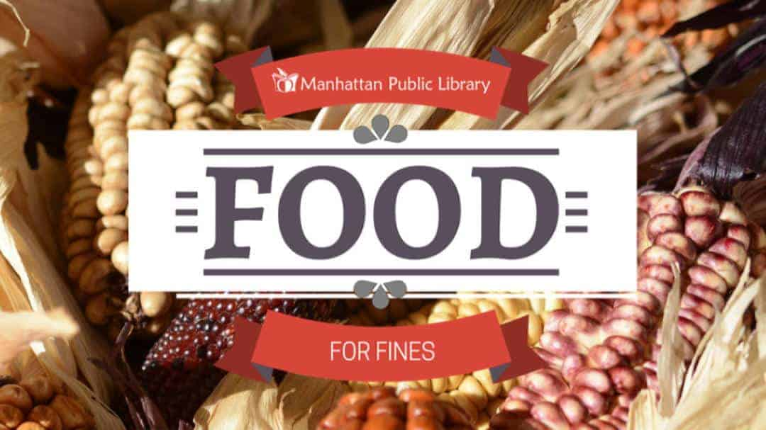 photo of maize with Food for Fines logo